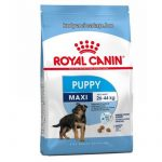 Royal Canin Maxi Puppy  4 kg