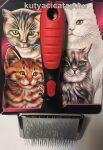 Kefe cicáknak 2