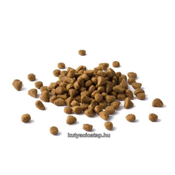 Cat Chow Adult  többféle 15 kg