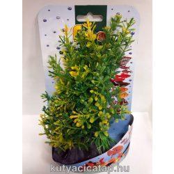 Műnövény  13-16 cm