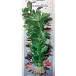 Műnövény 15-20 cm (2)