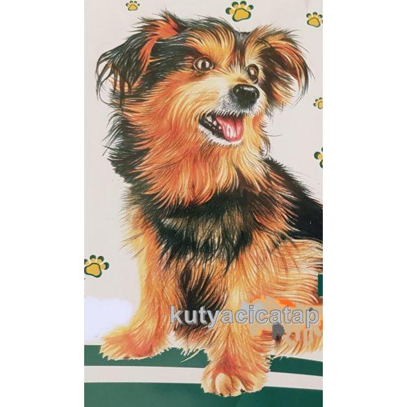 Pelenka kutyáknak 60 x 60 cm